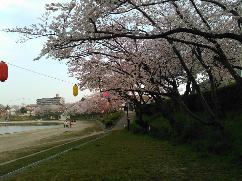 天王川桜まつりの屋台