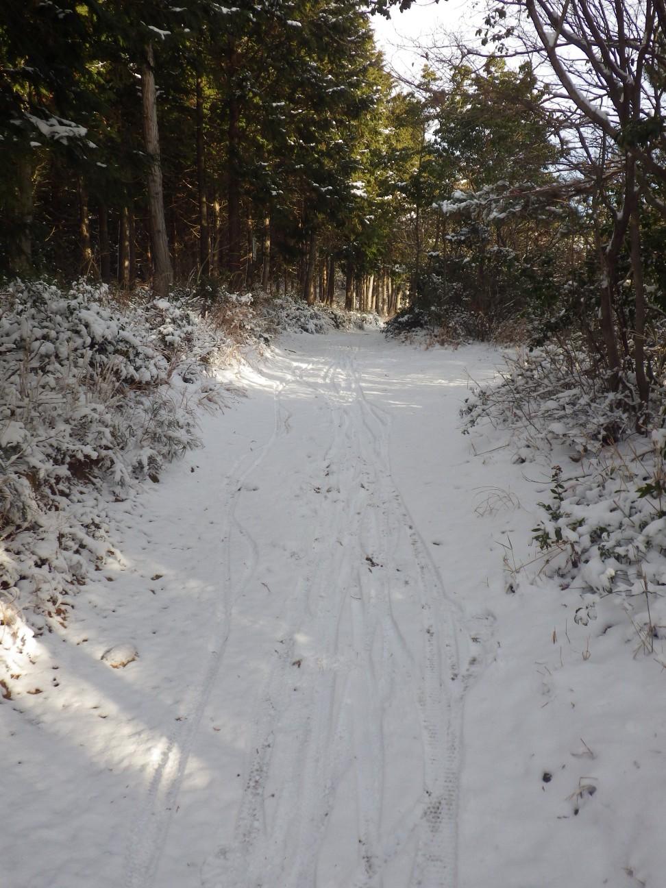 やべっ!雪道のトレイル楽しい!